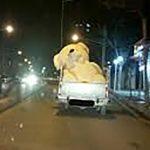 داستان کوتاه «خرس عروسکی ولنتاین»