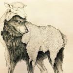 داستانک «حکایت گرگی در رمه»